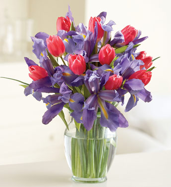 Send Flowers Plants Gifts To Presbyterian Hospital Of Dallas