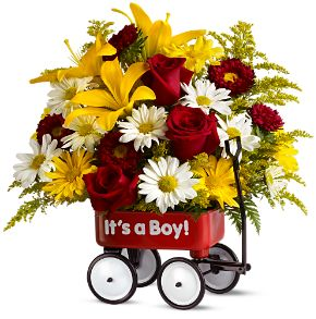 new baby flowers delivery to st paul university